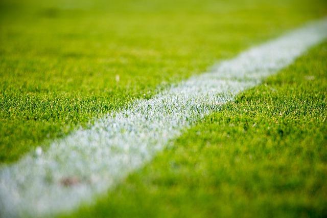 čára na trávníku