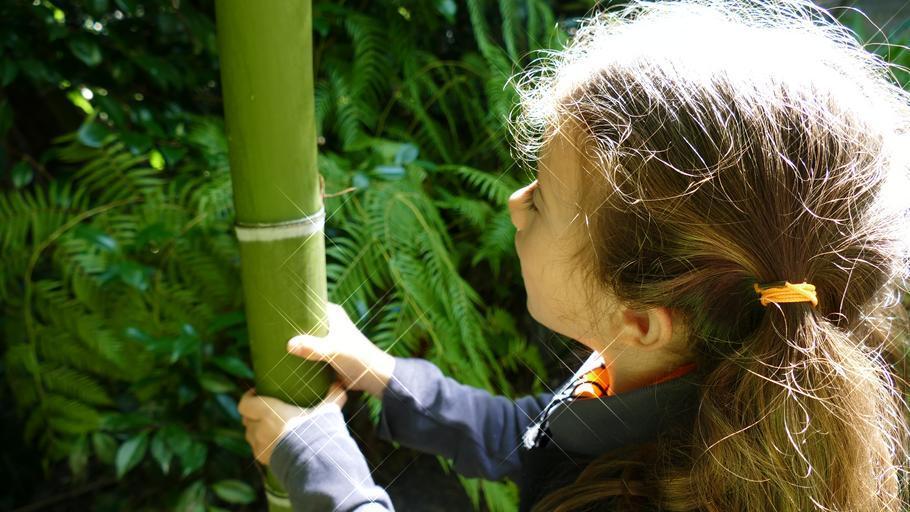dívka s bambusem